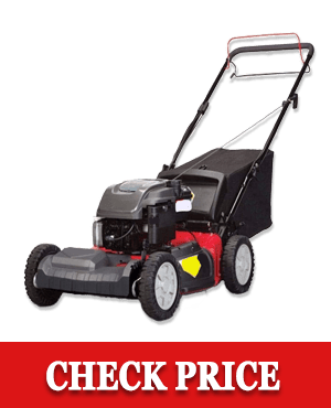 Snapper SP80 Self-Propelled Gas-Powered lawn Mower