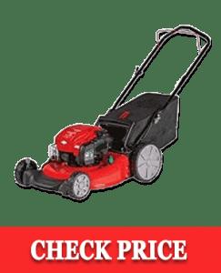 Craftsman M125 Briggs & Stratton Gas Powered Push Lawn Mower