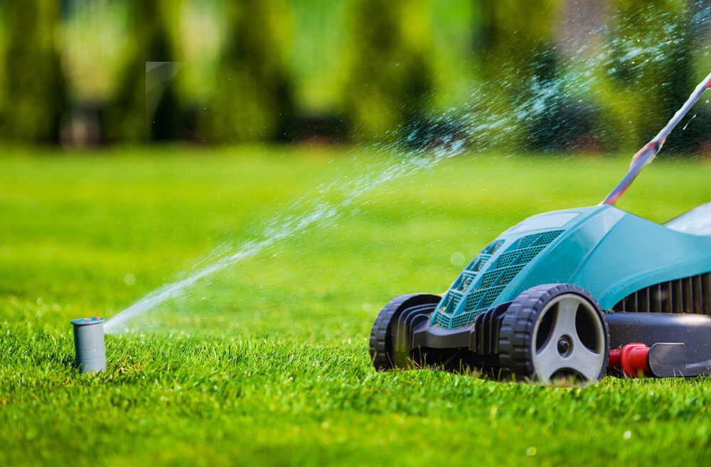 How To Protect Sprinkler Heads From Lawn Mowers?