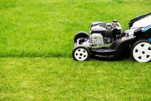 How To Measure A Lawn Mower Belt?